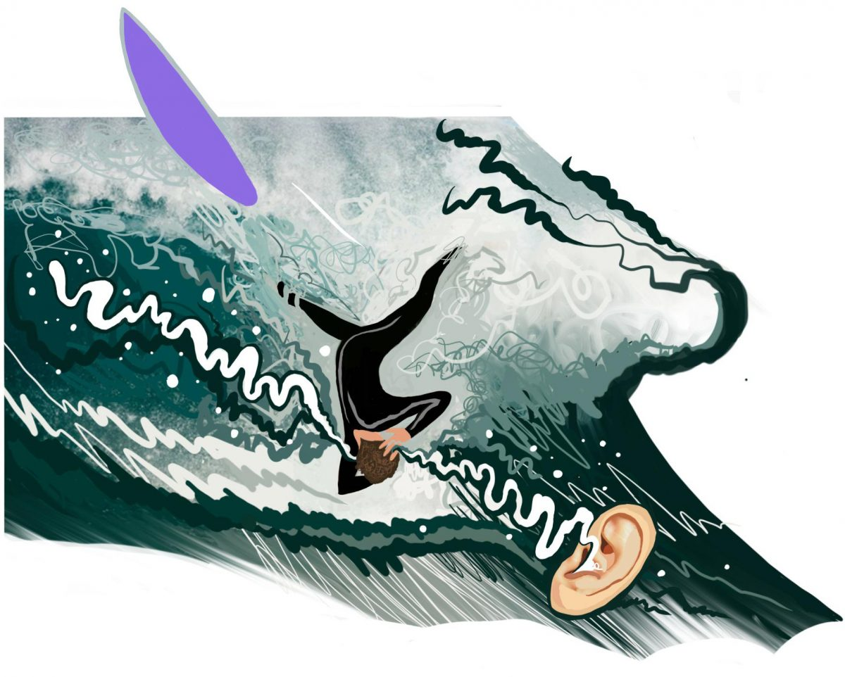 surfearbrochure3